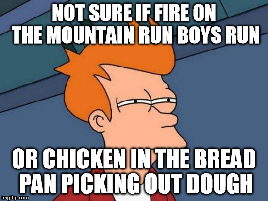 Futurama Fry Meme | NOT SURE IF FIRE ON THE MOUNTAIN RUN BOYS RUN OR CHICKEN IN THE BREAD PAN PICKING OUT DOUGH | image tagged in memes,futurama fry | made w/ Imgflip meme maker