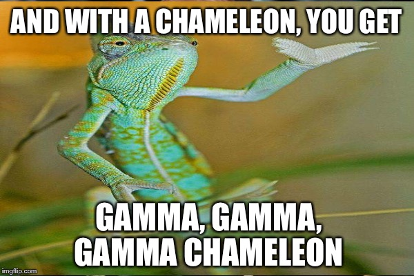 AND WITH A CHAMELEON, YOU GET GAMMA, GAMMA, GAMMA CHAMELEON | made w/ Imgflip meme maker