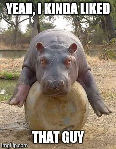 Happy hippo | YEAH, I KINDA LIKED THAT GUY | image tagged in happy hippo | made w/ Imgflip meme maker