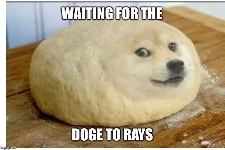 WAITING FOR THE DOGE TO RAYS | made w/ Imgflip meme maker