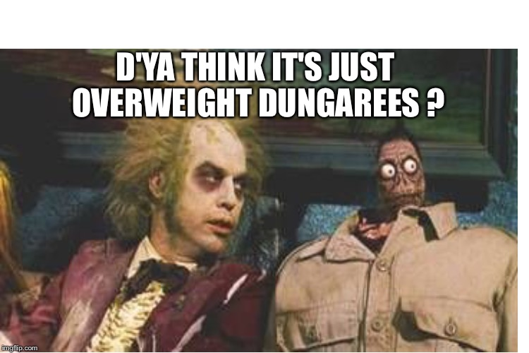D'YA THINK IT'S JUST OVERWEIGHT DUNGAREES ? | made w/ Imgflip meme maker