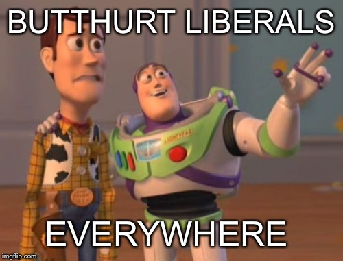 X, X Everywhere Meme | BUTTHURT LIBERALS EVERYWHERE | image tagged in memes,x x everywhere | made w/ Imgflip meme maker
