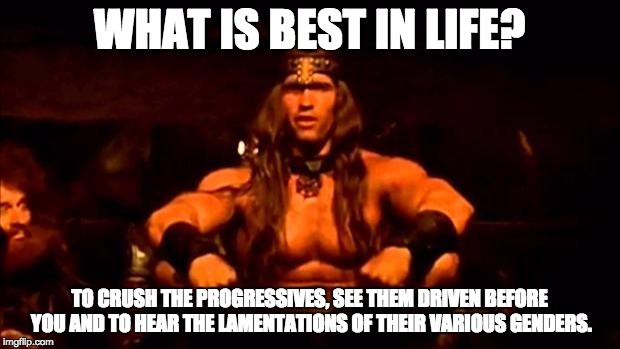 conan crush your enemies | WHAT IS BEST IN LIFE? TO CRUSH THE PROGRESSIVES, SEE THEM DRIVEN BEFORE YOU AND TO HEAR THE LAMENTATIONS OF THEIR VARIOUS GENDERS. | image tagged in conan crush your enemies | made w/ Imgflip meme maker