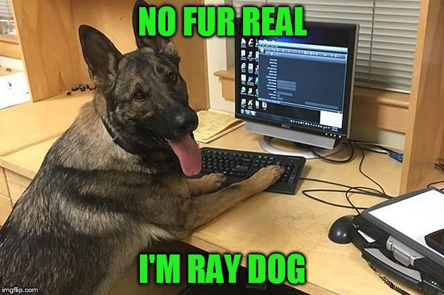 NO FUR REAL I'M RAY DOG | made w/ Imgflip meme maker