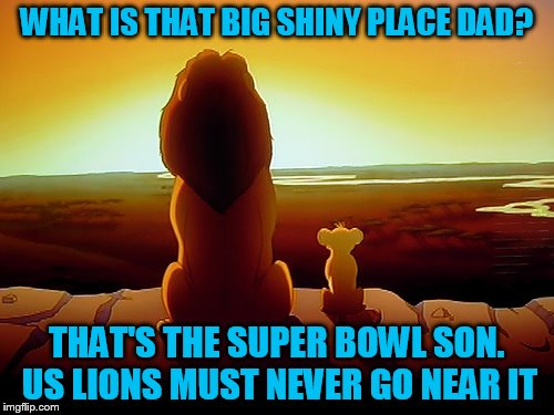 WHAT IS THAT BIG SHINY PLACE DAD? THAT'S THE SUPER BOWL SON. US LIONS MUST NEVER GO NEAR IT | made w/ Imgflip meme maker