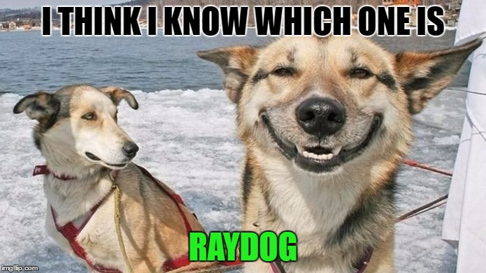 Username weekend....I just got the memo... | I THINK I KNOW WHICH ONE IS RAYDOG | image tagged in raydog,username weekend | made w/ Imgflip meme maker