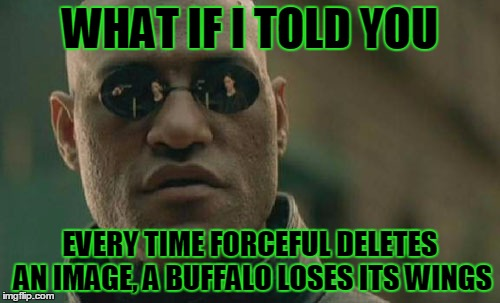 Forceful Provides Us With Buffalo Wings - Use The Username Weekend |  WHAT IF I TOLD YOU; EVERY TIME FORCEFUL DELETES AN IMAGE, A BUFFALO LOSES ITS WINGS | image tagged in memes,matrix morpheus,use the username weekend,forceful,buffalo wings,now i'm hungry | made w/ Imgflip meme maker