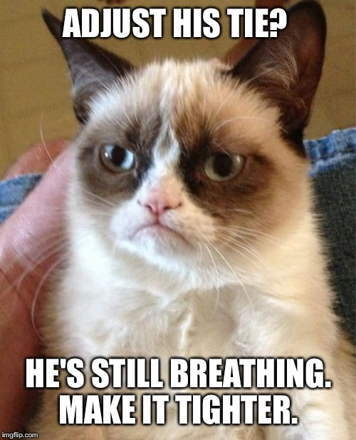 Grumpy Cat Meme | ADJUST HIS TIE? HE'S STILL BREATHING. MAKE IT TIGHTER. | image tagged in memes,grumpy cat | made w/ Imgflip meme maker