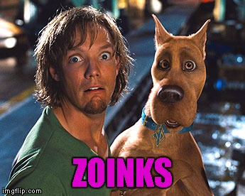 ZOINKS | made w/ Imgflip meme maker