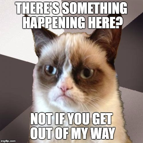 Musically Malicious Grumpy Cat | THERE'S SOMETHING HAPPENING HERE? NOT IF YOU GET OUT OF MY WAY | image tagged in musically malicious grumpy cat,grumpy cat | made w/ Imgflip meme maker