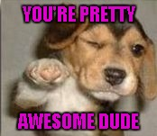 YOU'RE PRETTY AWESOME DUDE | made w/ Imgflip meme maker