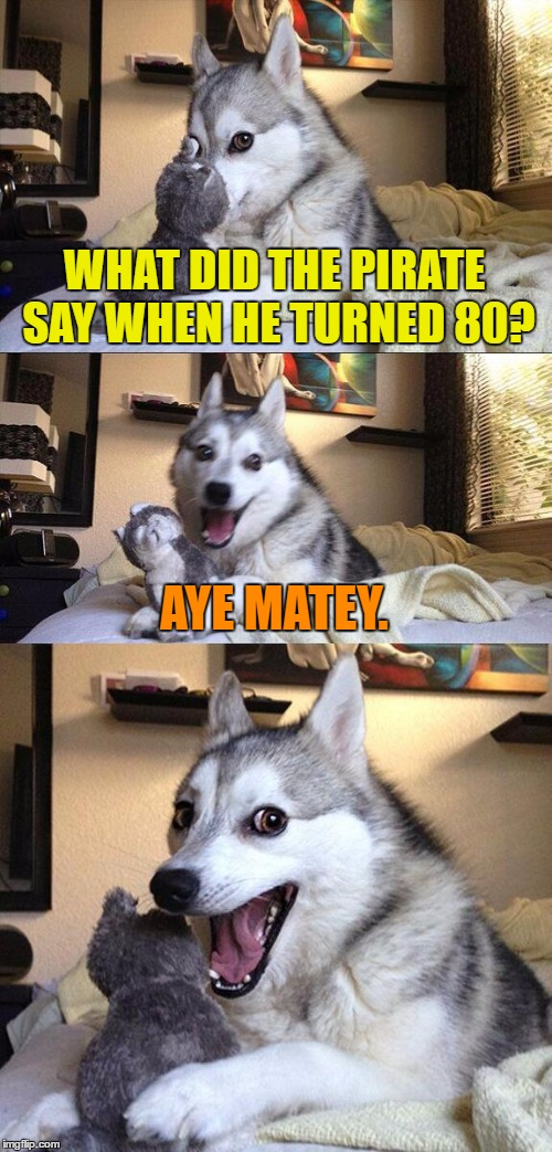 Bad Pun Dog Meme | WHAT DID THE PIRATE SAY WHEN HE TURNED 80? AYE MATEY. | image tagged in memes,bad pun dog | made w/ Imgflip meme maker