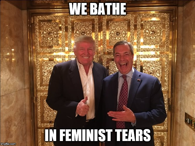 Trump and Farage | WE BATHE IN FEMINIST TEARS | image tagged in trump and farage | made w/ Imgflip meme maker