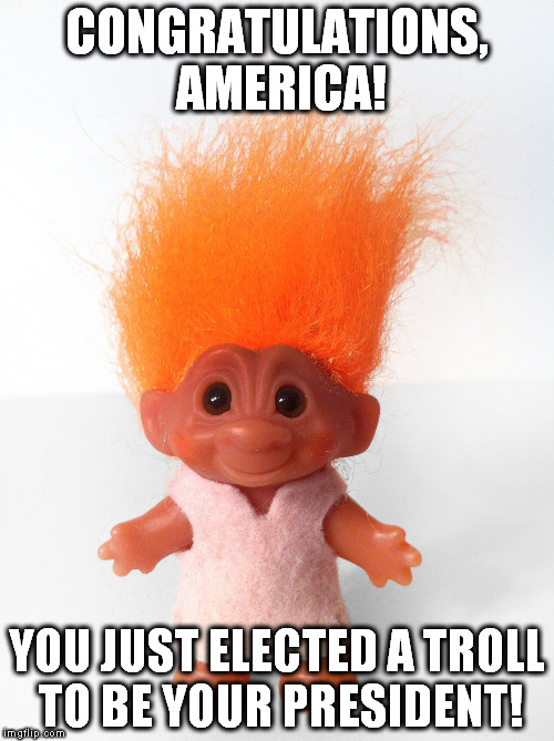 Troll doll |  CONGRATULATIONS, AMERICA! YOU JUST ELECTED A TROLL TO BE YOUR PRESIDENT! | image tagged in troll doll,trump,president,not my president | made w/ Imgflip meme maker