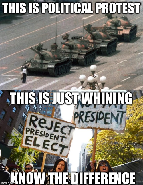 I see your whining and raise you a protest.   |  THIS IS POLITICAL PROTEST; THIS IS JUST WHINING; KNOW THE DIFFERENCE | image tagged in trump protestors,election 2016 | made w/ Imgflip meme maker