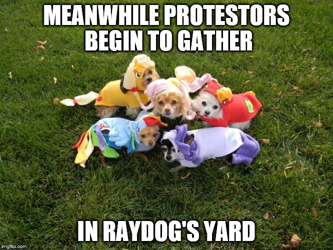MEANWHILE PROTESTORS BEGIN TO GATHER IN RAYDOG'S YARD | made w/ Imgflip meme maker