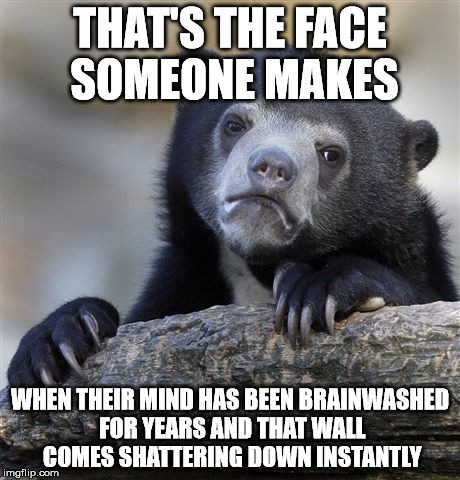 Confession Bear Meme | THAT'S THE FACE SOMEONE MAKES WHEN THEIR MIND HAS BEEN BRAINWASHED FOR YEARS AND THAT WALL COMES SHATTERING DOWN INSTANTLY | image tagged in memes,confession bear | made w/ Imgflip meme maker