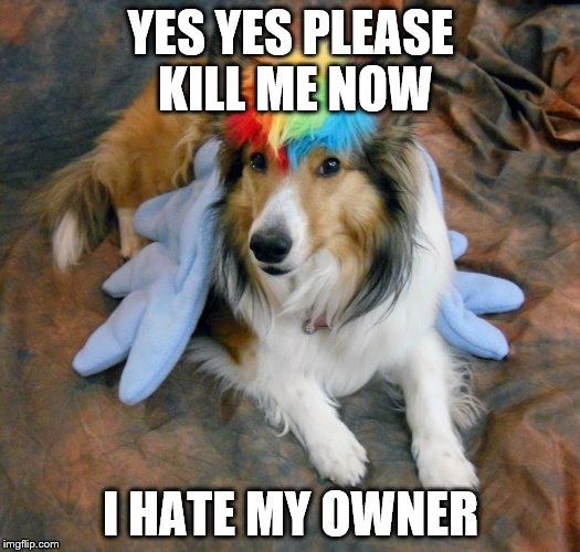 YES YES PLEASE KILL ME NOW I HATE MY OWNER | made w/ Imgflip meme maker