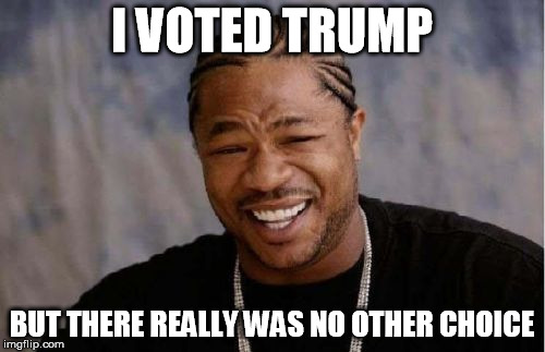 Yo Dawg Heard You Meme | I VOTED TRUMP BUT THERE REALLY WAS NO OTHER CHOICE | image tagged in memes,yo dawg heard you | made w/ Imgflip meme maker