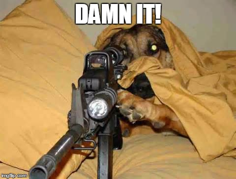 Sniper Dog | DAMN IT! | image tagged in sniper dog | made w/ Imgflip meme maker