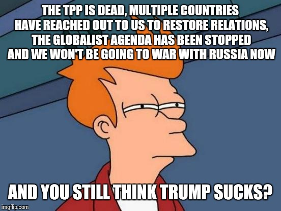 Futurama Fry Meme | THE TPP IS DEAD, MULTIPLE COUNTRIES HAVE REACHED OUT TO US TO RESTORE RELATIONS, THE GLOBALIST AGENDA HAS BEEN STOPPED AND WE WON'T BE GOING | image tagged in memes,futurama fry | made w/ Imgflip meme maker