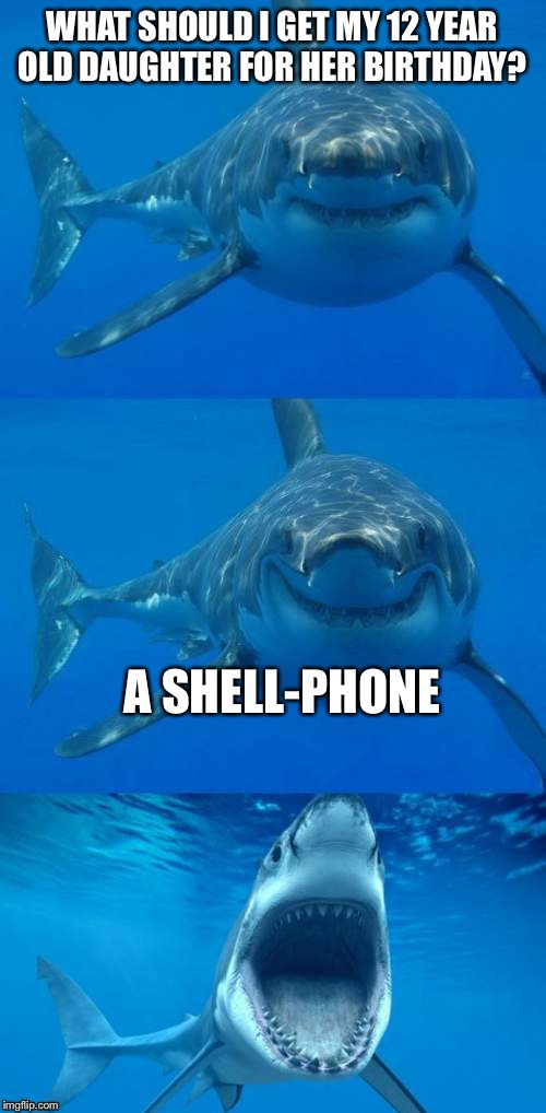 Bad Shark Pun  | WHAT SHOULD I GET MY 12 YEAR OLD DAUGHTER FOR HER BIRTHDAY? A SHELL-PHONE | image tagged in bad shark pun | made w/ Imgflip meme maker