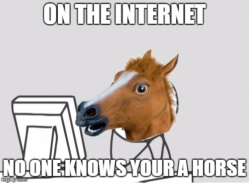 on the internet | ON THE INTERNET NO ONE KNOWS YOUR A HORSE | image tagged in memes,computer horse | made w/ Imgflip meme maker