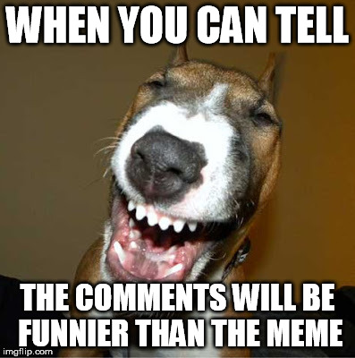 WHEN YOU CAN TELL THE COMMENTS WILL BE FUNNIER THAN THE MEME | made w/ Imgflip meme maker
