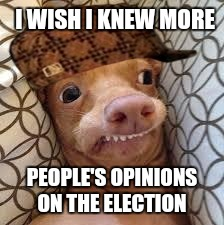 Dumb Dog | I WISH I KNEW MORE PEOPLE'S OPINIONS ON THE ELECTION | image tagged in dumb dog,scumbag,election 2016,opinion | made w/ Imgflip meme maker