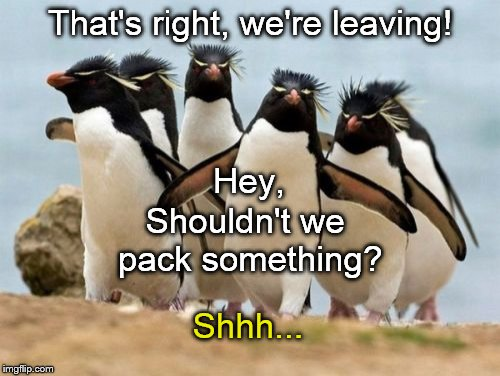 Progressive Penguin Gang carrying through with promise to flee the US & live their conviction that we're just dumbasses. | That's right, we're leaving! Shhh... Shouldn't we pack something? Hey, | image tagged in penguin gang,dumbassery,dumbasses,election 2016,spoiled college kids,does this look like progress to you | made w/ Imgflip meme maker
