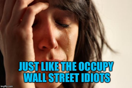 First World Problems Meme | JUST LIKE THE OCCUPY WALL STREET IDIOTS | image tagged in memes,first world problems | made w/ Imgflip meme maker