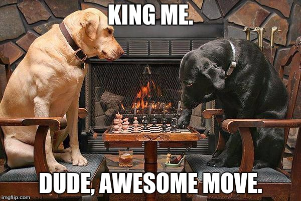 Dogs Playing Chess | KING ME. DUDE, AWESOME MOVE. | image tagged in dogs playing chess | made w/ Imgflip meme maker