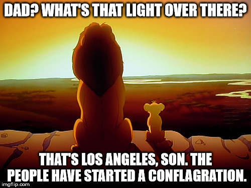 Lion King Meme |  DAD? WHAT'S THAT LIGHT OVER THERE? THAT'S LOS ANGELES, SON. THE PEOPLE HAVE STARTED A CONFLAGRATION. | image tagged in memes,lion king | made w/ Imgflip meme maker