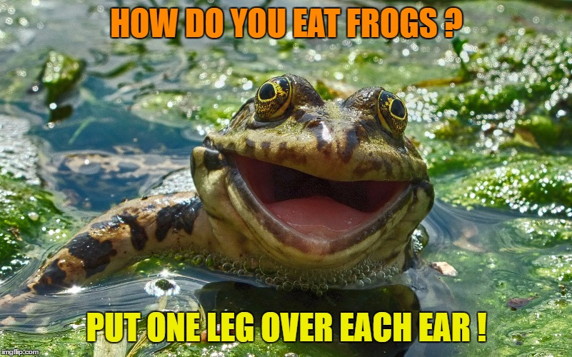 HOW DO YOU EAT FROGS ? PUT ONE LEG OVER EACH EAR ! | made w/ Imgflip meme maker