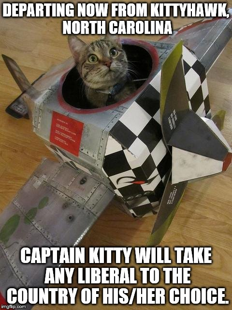 airplane cat | DEPARTING NOW FROM KITTYHAWK, NORTH CAROLINA CAPTAIN KITTY WILL TAKE ANY LIBERAL TO THE COUNTRY OF HIS/HER CHOICE. | image tagged in airplane cat | made w/ Imgflip meme maker