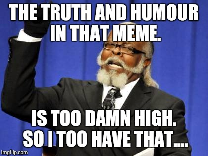 Musings on the GREAT Mysteries. | THE TRUTH AND HUMOUR IN THAT MEME. IS TOO DAMN HIGH. SO I TOO HAVE THAT.... | image tagged in memes,too damn high,so i got that goin for me which is nice,so hot right now alternative | made w/ Imgflip meme maker