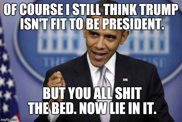 Barack Obama | OF COURSE I STILL THINK TRUMP ISN'T FIT TO BE PRESIDENT. BUT YOU ALL SHIT THE BED. NOW LIE IN IT. | image tagged in barack obama,trump is dog shit,unify this | made w/ Imgflip meme maker
