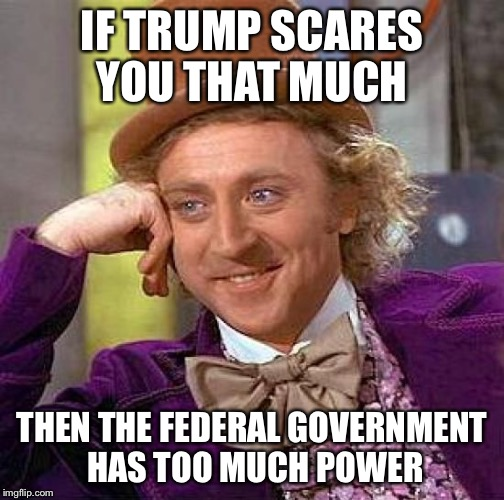 Creepy Condescending Wonka Meme | IF TRUMP SCARES YOU THAT MUCH THEN THE FEDERAL GOVERNMENT HAS TOO MUCH POWER | image tagged in memes,creepy condescending wonka,government,trump,power | made w/ Imgflip meme maker