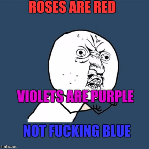 Y U No Meme | ROSES ARE RED VIOLETS ARE PURPLE NOT F**KING BLUE | image tagged in memes,y u no | made w/ Imgflip meme maker