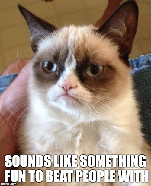 Grumpy Cat Meme | SOUNDS LIKE SOMETHING FUN TO BEAT PEOPLE WITH | image tagged in memes,grumpy cat | made w/ Imgflip meme maker