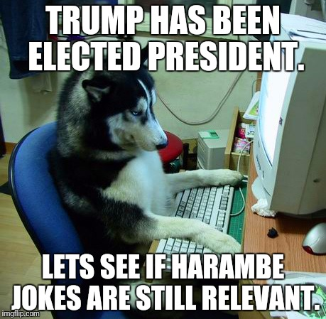 It seems that everything on here is about trump. :/ | TRUMP HAS BEEN ELECTED PRESIDENT. LETS SEE IF HARAMBE JOKES ARE STILL RELEVANT. | image tagged in memes,i have no idea what i am doing | made w/ Imgflip meme maker