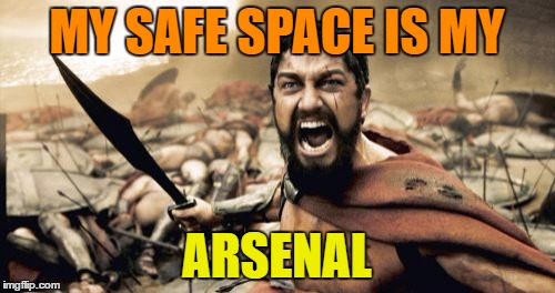 Sparta Leonidas Meme | MY SAFE SPACE IS MY ARSENAL | image tagged in memes,sparta leonidas | made w/ Imgflip meme maker