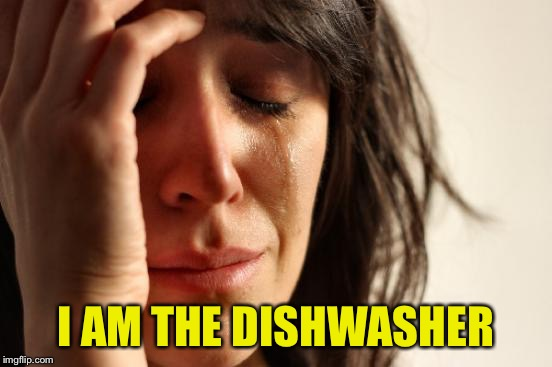 First World Problems Meme | I AM THE DISHWASHER | image tagged in memes,first world problems | made w/ Imgflip meme maker