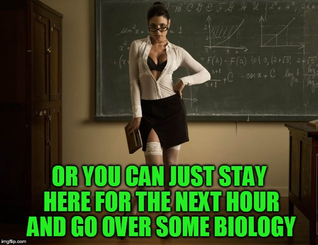 OR YOU CAN JUST STAY HERE FOR THE NEXT HOUR AND GO OVER SOME BIOLOGY | made w/ Imgflip meme maker