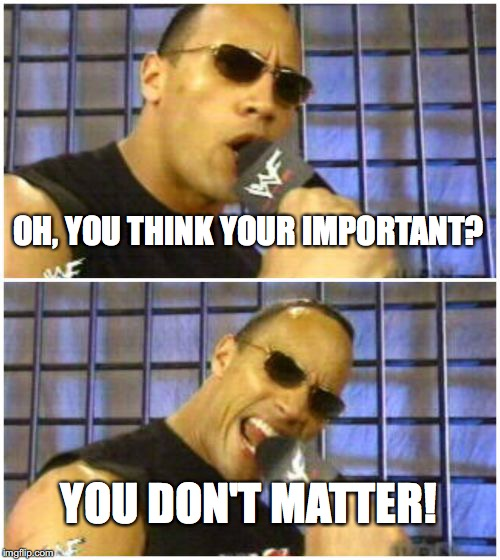 The Rock It Doesnt Matter | OH, YOU THINK YOUR IMPORTANT? YOU DON'T MATTER! | image tagged in memes,the rock it doesnt matter | made w/ Imgflip meme maker