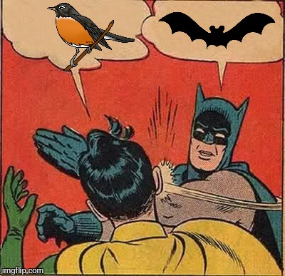Batman Slapping Robin Meme | image tagged in memes,batman slapping robin | made w/ Imgflip meme maker