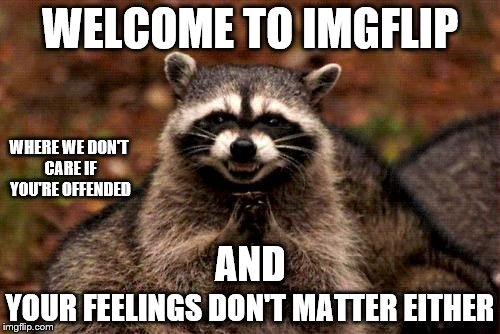 Bahahahahahaha | WELCOME TO IMGFLIP YOUR FEELINGS DON'T MATTER EITHER AND WHERE WE DON'T CARE IF YOU'RE OFFENDED | image tagged in memes,evil plotting raccoon | made w/ Imgflip meme maker