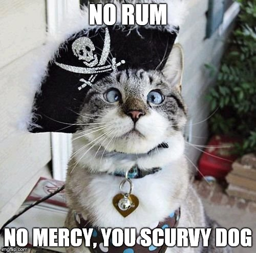 Spangles | NO RUM NO MERCY, YOU SCURVY DOG | image tagged in memes,spangles | made w/ Imgflip meme maker