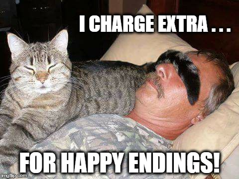 A Happy Ending? |  I CHARGE EXTRA . . . FOR HAPPY ENDINGS! | image tagged in funny cats,cats,pet humor | made w/ Imgflip meme maker