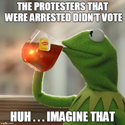 But Thats None Of My Business Meme | THE PROTESTERS THAT WERE ARRESTED DIDN'T VOTE HUH . . . IMAGINE THAT | image tagged in memes,but thats none of my business,kermit the frog | made w/ Imgflip meme maker